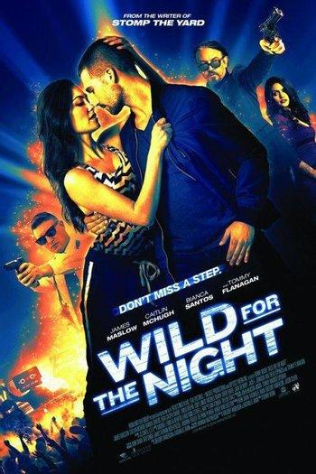 Poster zu Wild for the Night