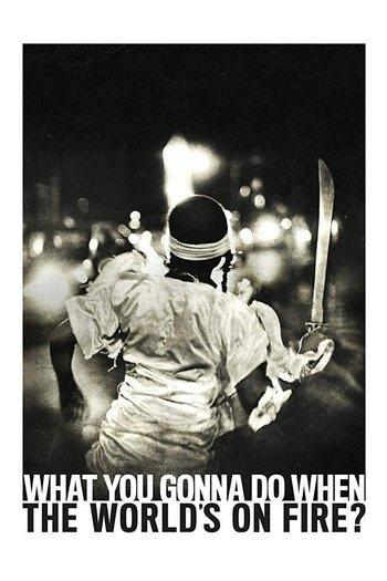 Poster zu What You Gonna Do When the World's on Fire?