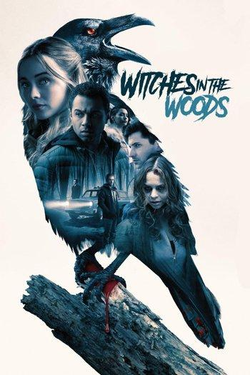 Poster zu Witches in the Woods