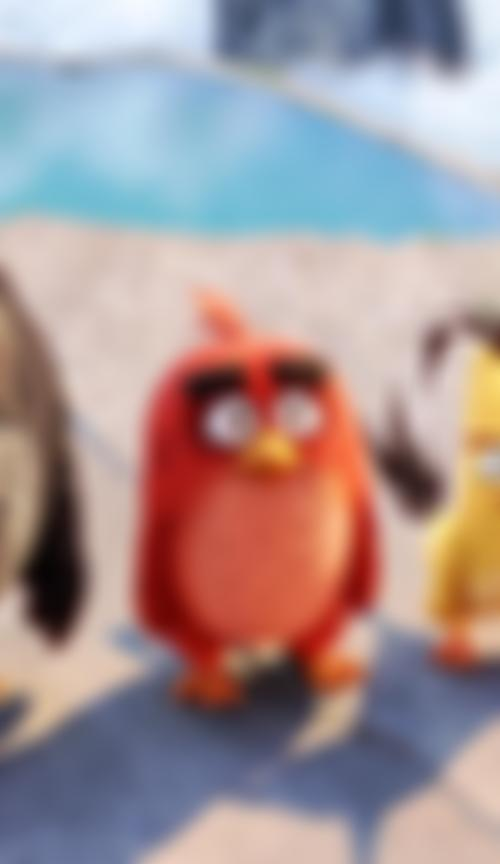 Image for Angry Birds - Der Film